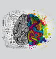 left and right human brain creative half and vector image