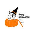 cute black cat in the orange pumpkin vector image