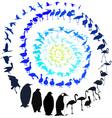 Birds in spiral vector image vector image