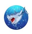 Images evil shark vector image