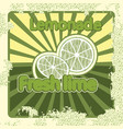 colorful vintage lemonade lime label poster vector image