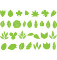 Green leafs vector image vector image