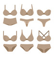 beige bras and panties vector image