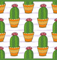cactus seamless pattern colorful cartoon flowers vector image