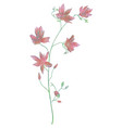 drawn watercolor flower vector image