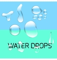 Transparent water drop set on light gray vector image