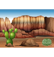 A desert with cacti vector image vector image