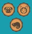 Dog cat and iguana emblem design vector image vector image