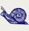 Snail sketch vector image vector image