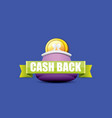 cash back icon with coins and wallet vector image
