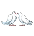 Kissing couple of doves vector image