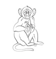 monkey sitting vector image