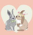 kissing rabbits vector image