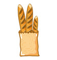 fresh and delicious french bread in the bad vector image