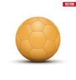 Handball Ball Orange vector image