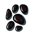 set of shiny black stones for massage spa salon vector image