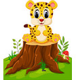 cute baby cheetah sitting on tree stump vector image