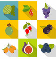 summer fruits icons set flat style vector image