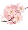 Blossom Sakura Cherry vector image vector image