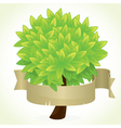 tree and banner vector image