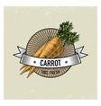 carrot vintage set of labels emblems or logo for vector image