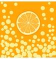 orange slice in bubbly drink vector image