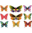 set of different multicolored butterflies vector image