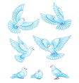 Set of pigeons - flying and sitting EPS10 vector image