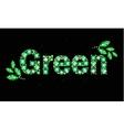 Gem word green vector image vector image