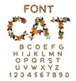 cat font catlike abc letters of cats pet alphabet vector image