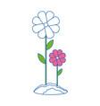 beautiful flowers gardening vector image