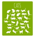 Cats In Various Poses vector image