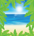 palm leaves on sand beach background vector image