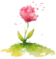 hand painted pink watercolor flower vector image vector image