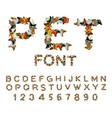 pet font cat alphabet letters of cats pets vector image