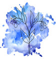 comfrey at watercolor background vector image
