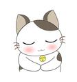 Cute cat character vector image