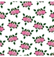 seamless wallpaper pink roses with leaves vector image