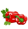 Sweet pepper Healthy lifestile vector image vector image