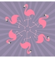 Pink flamingo on one leg Round circle compisition vector image