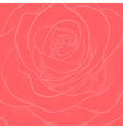 background with red rose close-up vector image
