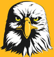 Eagle Head Front View Cartoon vector image