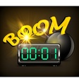 Bomb with timer vector image