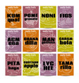 set of exotic fruits posters vector image