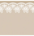 Seamless white lacy border vector image