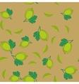 Gooseberry cartoon seamless texture 655 vector image