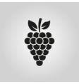 The grapes icon Grape symbol UI Web Logo Sign vector image