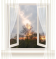 Background with an open window and an evening vector image