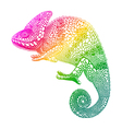 Zentangle stylized multi coloured Chameleon Hand vector image