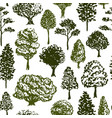 trees pattern sketch seamless tree pattern for vector image